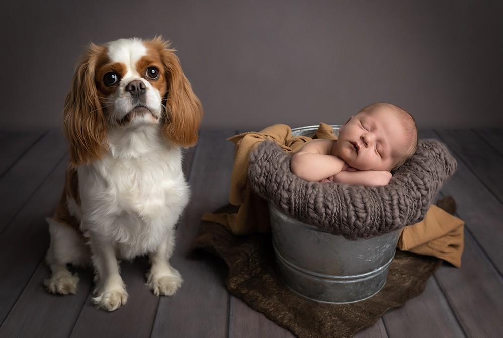 Newborn photographer in Milton Keynes captures image of baby boy with pet dog