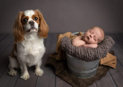 Newborn Photographer in Northampton baby boy with dog