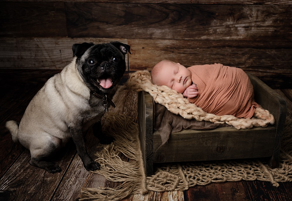 newborn baby with dog by newborn photographer in Milton Keynes