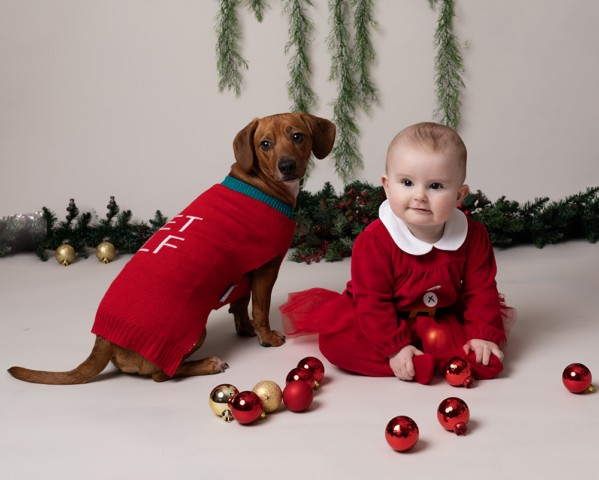 Baby Photographer Bedford baby with dog and christmas decorations