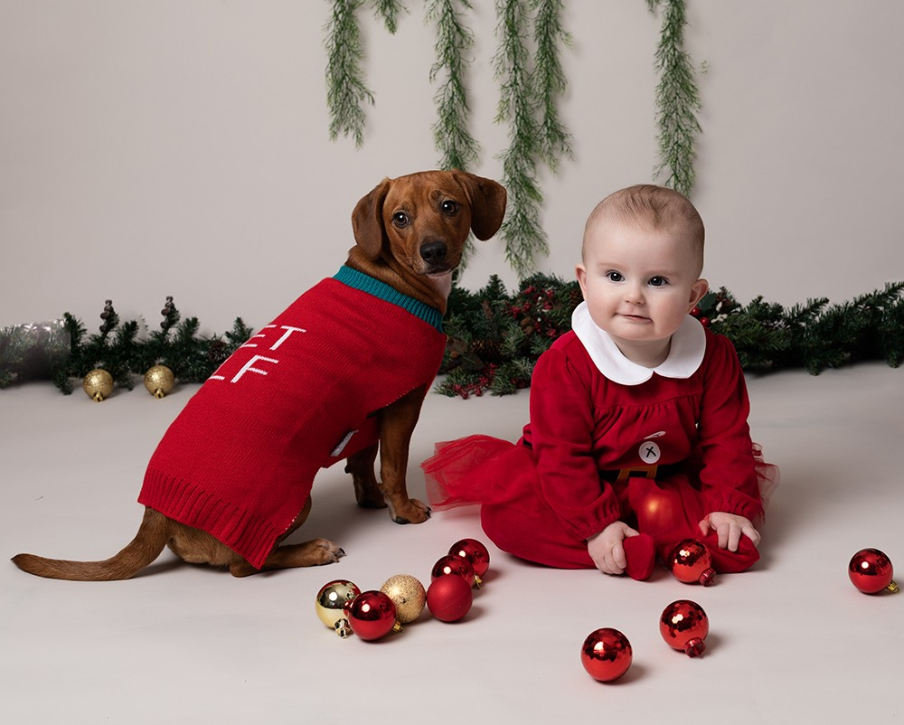 older baby girl with dog and christmas decorations by baby photographer in Bedford and Milton Keynes
