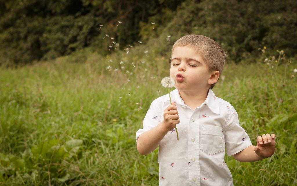 family photographer milton keynes photographs boy with dandelion on location